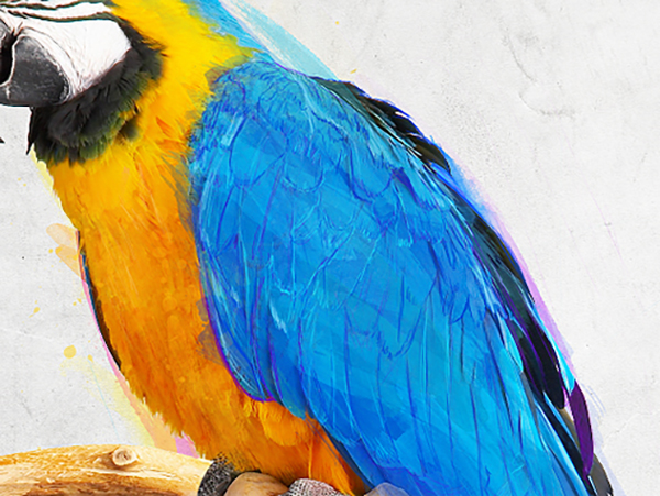 Parrot Design with Dispersion Effects in Photoshop